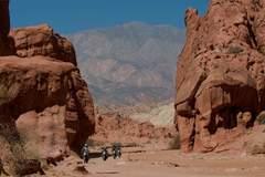 Reisen und Touren: Abenteuer Nordwest Argentinien und Atacama