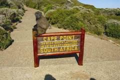 Reisen und Touren: Südafrika: Kapstadt - Windhoek