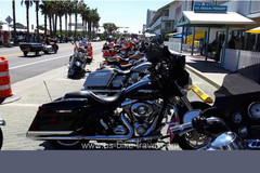 Reisen und Touren: Südstaaten der USA - Down in Dixie