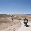 Reisen und Touren: Abenteuer Altiplano 2017