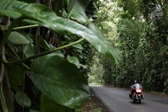 Reisen und Touren: Harley Touren USA - Hawaii